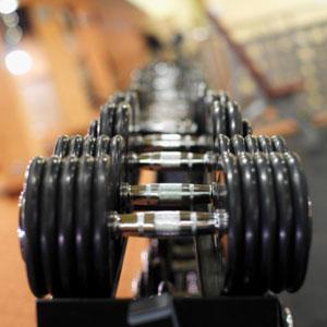 gym barbells organizing
